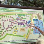 清水公園はアスレチック天国@千葉県野田